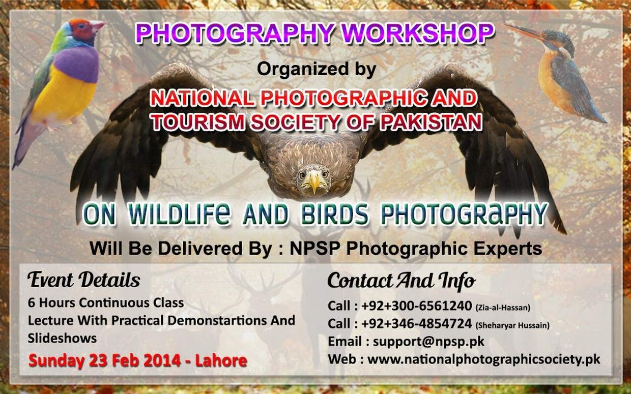 02. Photography Workshop In Lahore Pakistan On Wildlife And Birds Photography